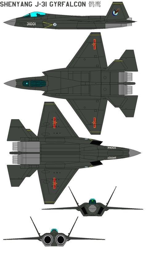 FC 31 J 31 Gyrfalcon Fighter Jet data pictures video 02